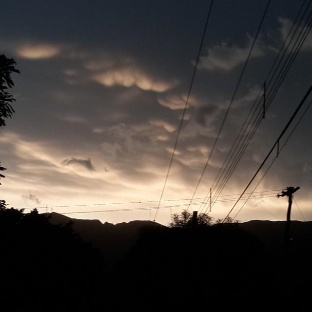 El majestuoso #Sararenda de #Camiri - la sucursal del cielo. #Bolivia