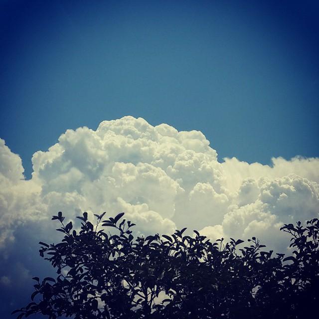 Y así se hace desear la lluvia en el Chaco. #Camiri se prepara pa un día de lluvia.