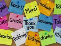 Gracias, Muchas Gracias